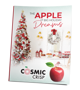 Apple of Big Holiday Dreams 2020 Guide